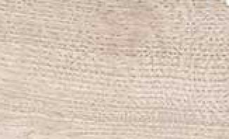 Chêne blanchi